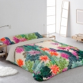 F. Nórdica Cactus Martina Home