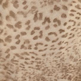 Papel Pintado Colección Skin 5070-2 de Iberostil